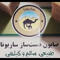 نسترن حسینی