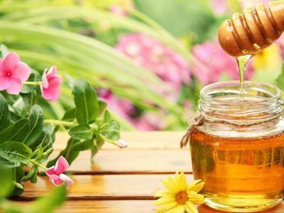 عسل طبیعی دنا یک کیلویی